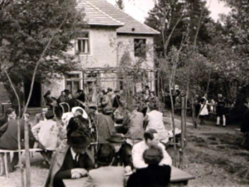 Waldwirt im Jahre 1952
